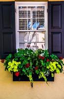 Charleston foto