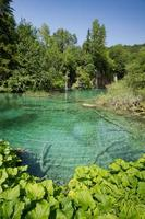 laghi di Plitvice foto
