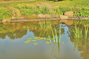 dettaglio del lago foto