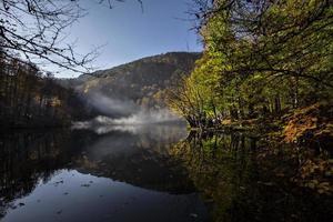 riflessa nel lago foto