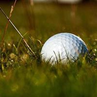 corso di golf foto