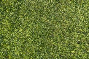 l'erba su un campo da golf foto