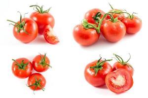 pomodori foto