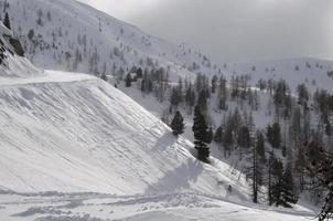 paysage de montagne enneigées