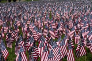 bandiere su Boston Common foto