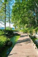 piccolo sentiero sul lago foto