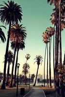 Los Angeles in centro