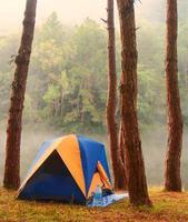 accamparsi nella foresta