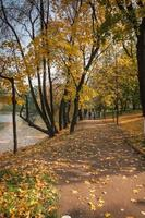 autunno nei parchi di mosca, russia foto