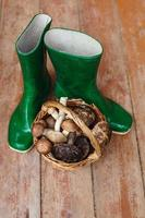 stivali di gomma verde e cesto pieno di funghi