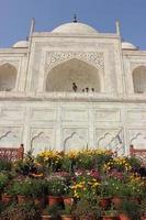 Taj Mahal vicino foto