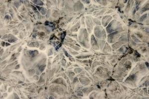 fine delle mattonelle di ceramica foto