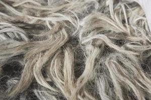 tappeto di pelliccia, primo piano foto