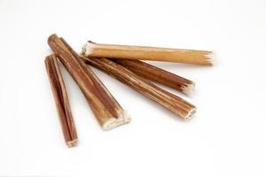 bully stick cane mastica foto