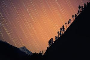 stella cadente foto