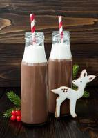 cioccolata calda in bottiglie retrò, biscotti di fave di cervo di panpepato foto