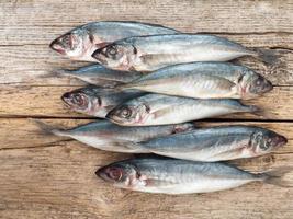 pesci carangidi sul bordo di legno grigio foto