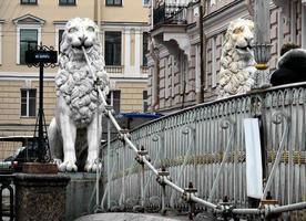 ponte dei leoni foto