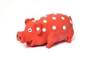 giocattolo di maiale foto