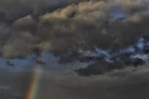 arc en en ciel et oiseau foto