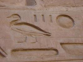 geroglifici anatra foto