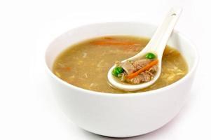 zuppa di anatra tagliuzzata cinese foto