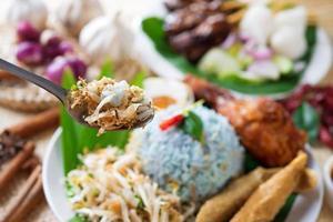 cibo della Malesia