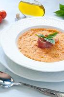 zuppa di pomodoro con pane, aglio, olio, sale e pepe foto