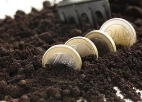 le monete in euro crescono da terra (concetto di business) foto
