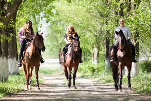 gruppo di cavalieri di donna nella foresta foto