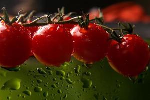 pomodori in gocce d'acqua su sfondo verde foto