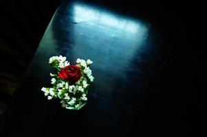 vaso di fiori foto