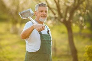 Ritratto di un uomo anziano bello giardinaggio foto