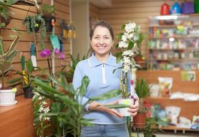 la donna sceglie l'orchidea del dendrobium foto