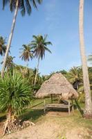 bungalow sulla spiaggia foto