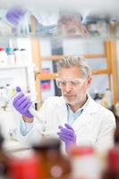 life scientist ricercando in laboratorio.