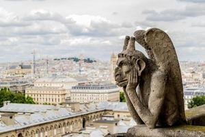 il doccione di Notre Dame foto