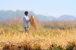 uomo rurale indiano che lavora nel campo foto