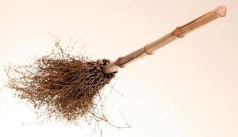 broom2 foto