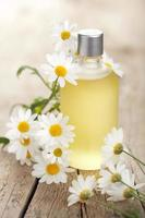 olio essenziale e fiori di camomilla foto