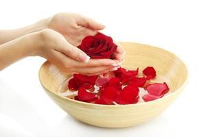 mani della donna con la ciotola di acqua con i petali, bianco isolato foto