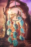 Dreamcatcher su una foresta al tramonto foto