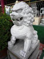 leone di pietra foto