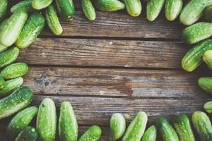 bordo organico naturale della cornice con i cetrioli foto