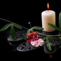 concetto di bellissima spa di orchidea bianca e rossa (cambria) foto
