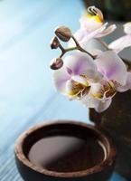 orchidee, prodotti biologici, spa