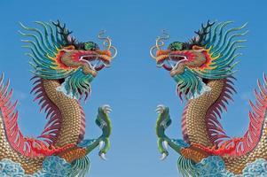 drago cinese gemello. foto