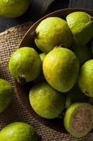 guava verde biologica fresca foto