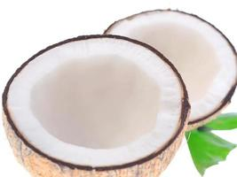 noci di cocco con foglie su uno sfondo bianco foto