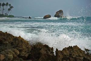 spiaggia della Sri Lanka foto